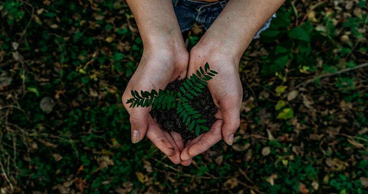 Green is the new black. Sempre più richiesti prodotti e servizi che rispettino l'ambiente